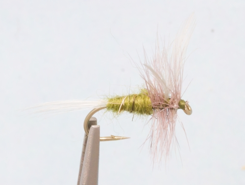 Blue wing olive closeout sale half dozen for Fly fishing closeouts