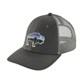 Patagonia Fitz Roy Bison LoPro Trucker Hat Sale On Select Colors