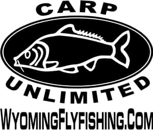 Carp Unlimited Fly Fishing Sticker