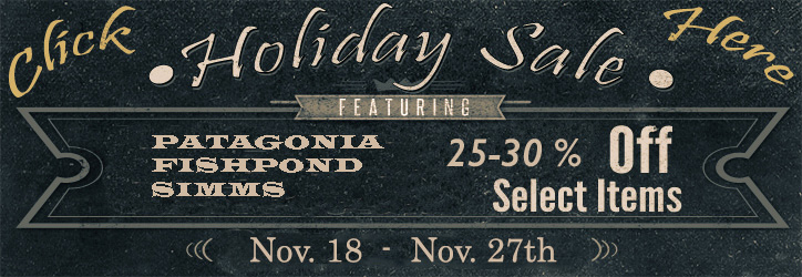patagonia holiday 30% off holiday sale