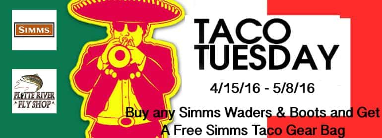 simms taco tuesday